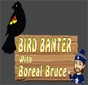 Bird Banter podcast logo.